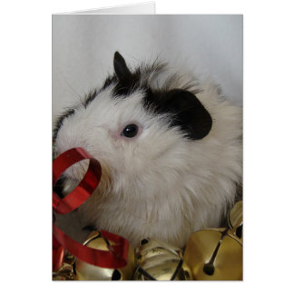 Guinea Pig With Gold Bells Card