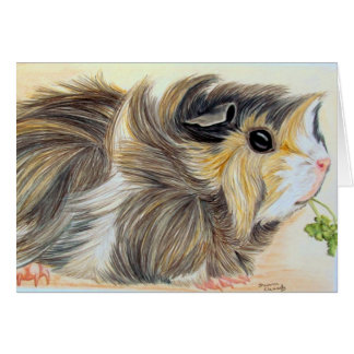 Guinea Pig with sprig Greeting Card