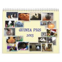 Guinea Pigs 2013 Calendar