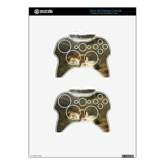 Guinea Pigs by George Morland Xbox 360 Controller Skins