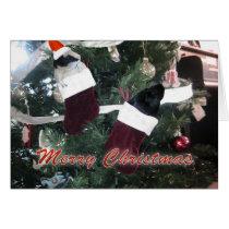 Guinea Pigs Christmas Card