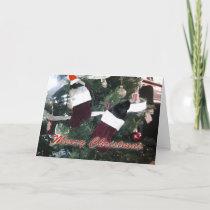 Guinea Pigs Christmas Holiday Card