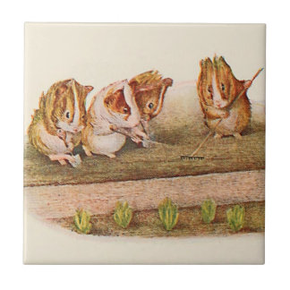 Guinea Pigs in the Garden Alternate Tile