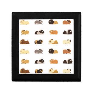 Guinea pigs keepsake box