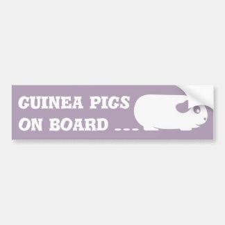 'Guinea Pigs on Board' Bumper Sticker