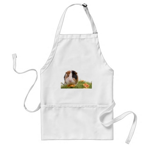 guinea pigs one has lawn aprons
