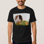 guinea pigs one has lawn tee shirt