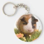 Guinea pigs se tiene lawn llaveros personalizados