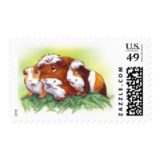 Guinea Pigs Stamps