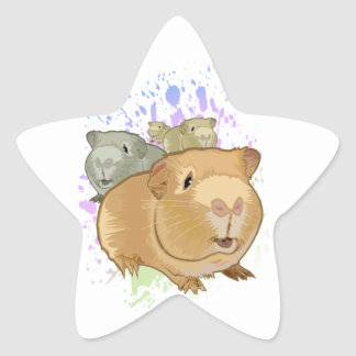 Guinea Pigs Star Sticker
