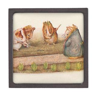Guinea Pigs Tending the Garden Illustrated Gift Box