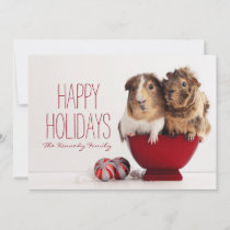 Guinea pigs with Christmas ball Holiday Card