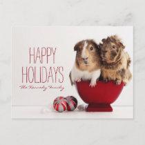 Guinea pigs with Christmas ball Holiday Postcard