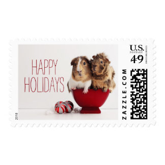 Guinea pigs with Christmas ball Postage