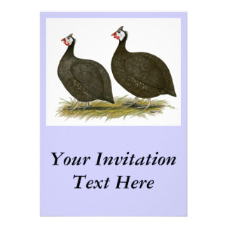 Guineas Chocolate Personalized Invitations