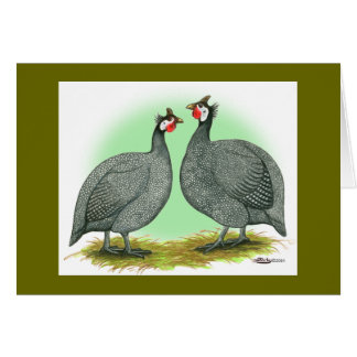 Guineas:  French Stationery Note Card