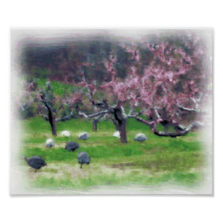 Guineas in the Orchard Print/Poster