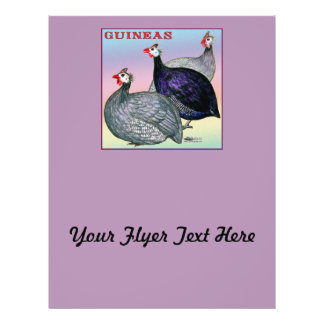 Guineas Three Fowl Flyer