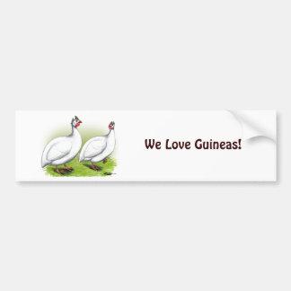 Guineas:  White Car Bumper Sticker