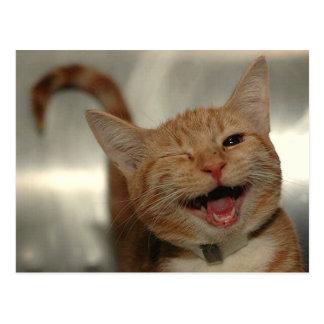 Guiño del gato feliz del jengibre postales