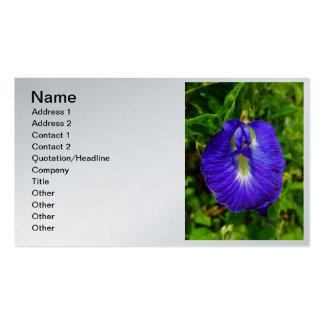 Guisante de mariposa tarjetas de visita