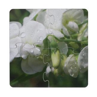 Guisante de olor blanco posavasos de puzzle