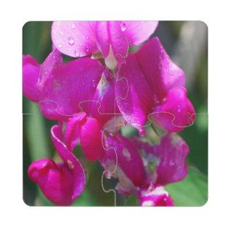 Guisante de olor rosado posavasos de puzzle