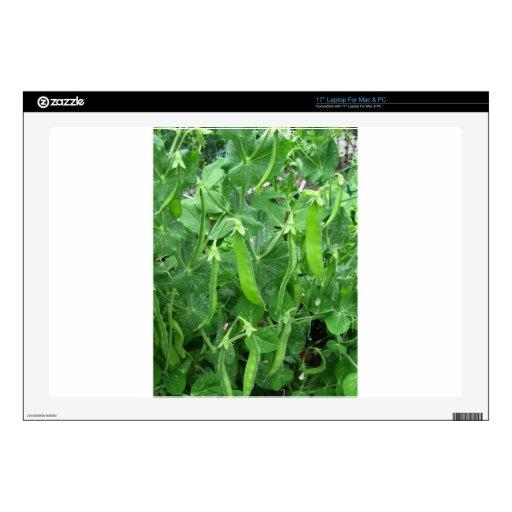 Guisantes comestibles preparados - fotografía skins para 43,2cm portátiles