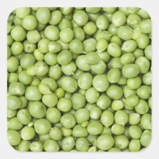 Guisantes orgánicos frescos 2 pegatina cuadrada