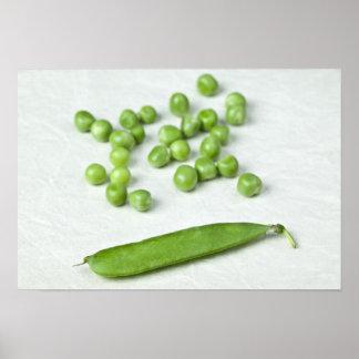 Guisantes verdes y cáscara póster