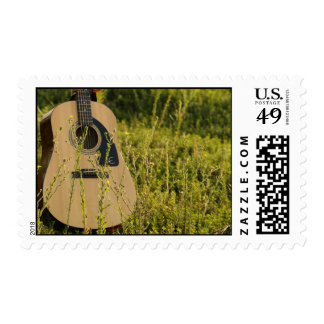 Guitar In Field Postage