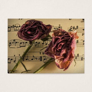 Guitar or Music Lesson Business Card