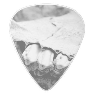 Guitar Pick - Bone