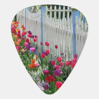guitar pick tulips garden white picket fence