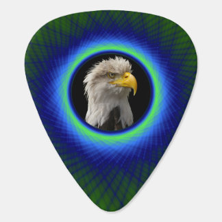 Guitar Pick  Woven Frame in Green and Blue
