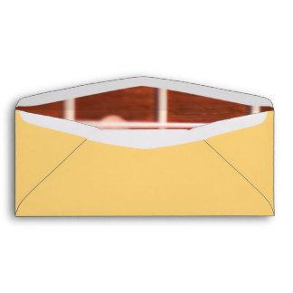 Guitar strings envelope