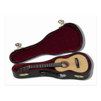 GuitarAndCase081210 Postal