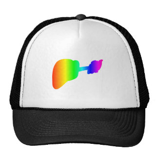 Guitarra del arco iris gorros bordados