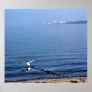 Gul saca los WI de Monona Madison del lago Impresiones