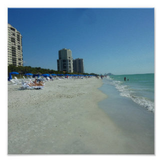 Gulf Beach Naples, Florida Poster