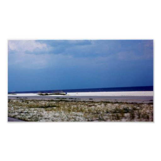 Gulf Coast Flowers, Beaches and Landscapes Poster