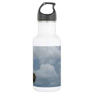 Gulf Coast Stainless Steel Water Bottle