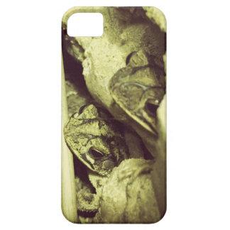 Gulf Coast Toad iPhone SE/5/5s Case