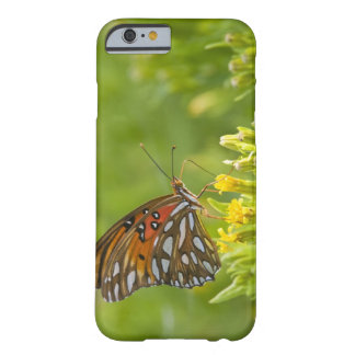 Gulf Fritillary (Agraulis vanillae) feeding on Barely There iPhone 6 Case