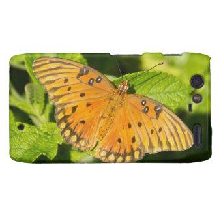 Gulf Fritillary Butterfly Motorola Droid RAZR Covers