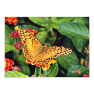 Gulf fritillary butterfly, Mexico  flowers Custom Announcements
