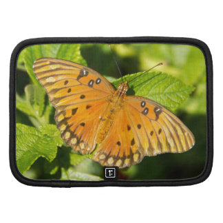Gulf Fritillary Butterfly Planners