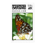 Gulf Fritillary butterfly Postage