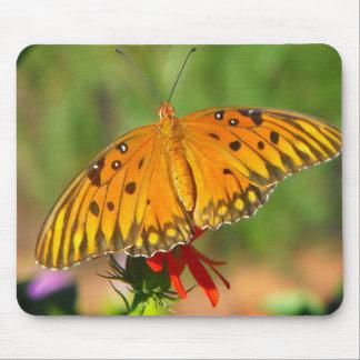Gulf Fritillary Butterfly Upclose Mouse Pad