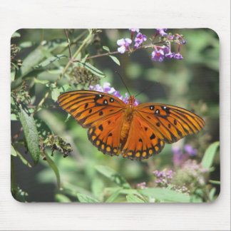 Gulf Fritter Butterfly Mouse Pad